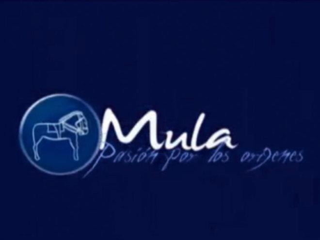 """Documental """"Mula, pasión por los orígenes""""."""